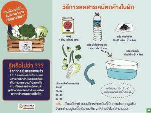 ลดสารเคมีตกค้างในผัก