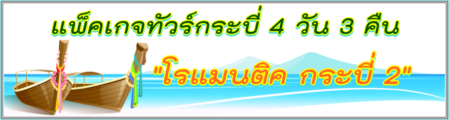 4D3N-2.1