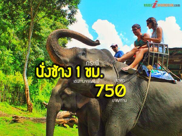 นั่งช้าง5